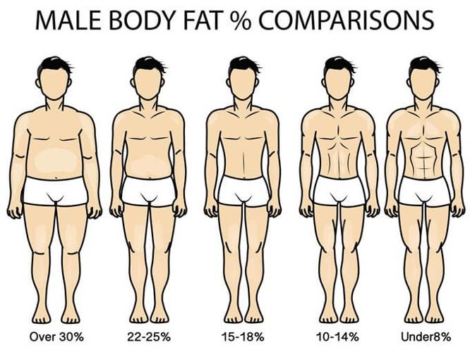 男性 体 脂肪 率 15 パーセント